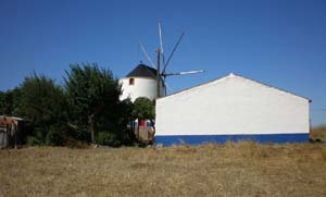 windmillfarm-copy.jpg