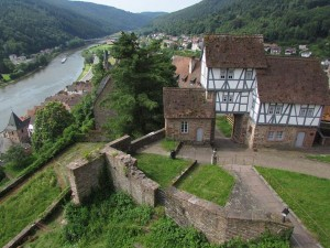The view over the castle gate and the lower town and Neckar River enjoyed by our guests